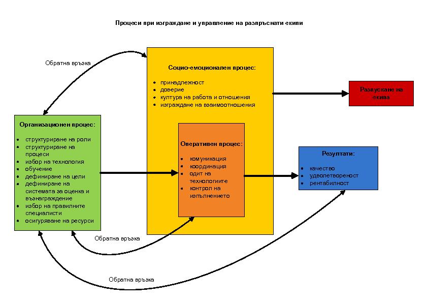 virtual team process structure 2